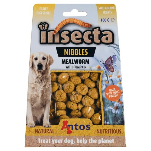 Insecta Nibbles - Mealworm