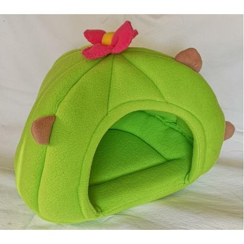 Cactus Hut