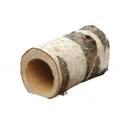 Silver Birch Log -  Rappenrohre Tube