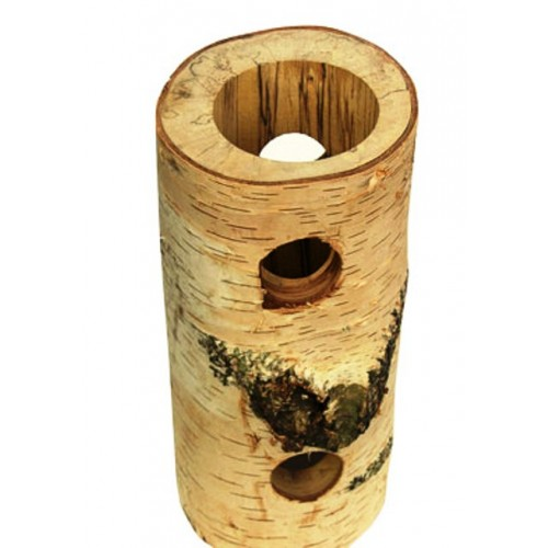 Silver Birch Log -  Octodon Tube